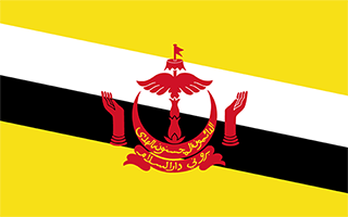 National Flag Brunei