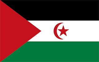 National Flag Western Sahara