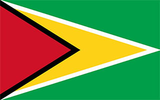 National Flag Guyana